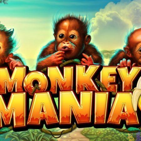 Monkey Mania, new from Gamomat