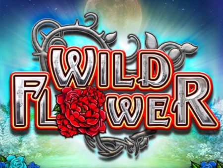 Wild Flower, a new Big Time Gaming hit